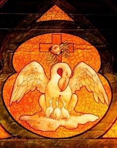 pelikan-rosenkreuzer